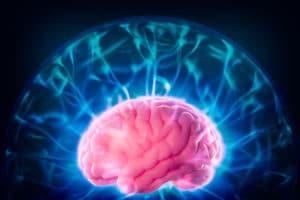 Image cerveau - ecole de pnl de lausanne - epnll